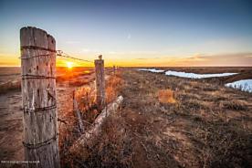 Photo of Brorman Farm Vega, TX 79092