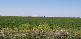 Photo of JUETT ATTEBURY Amarillo, TX 79118