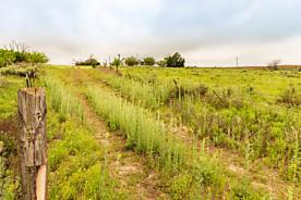 Photo of Mobeetie Ranch + Minerals Mobeetie, TX 79061
