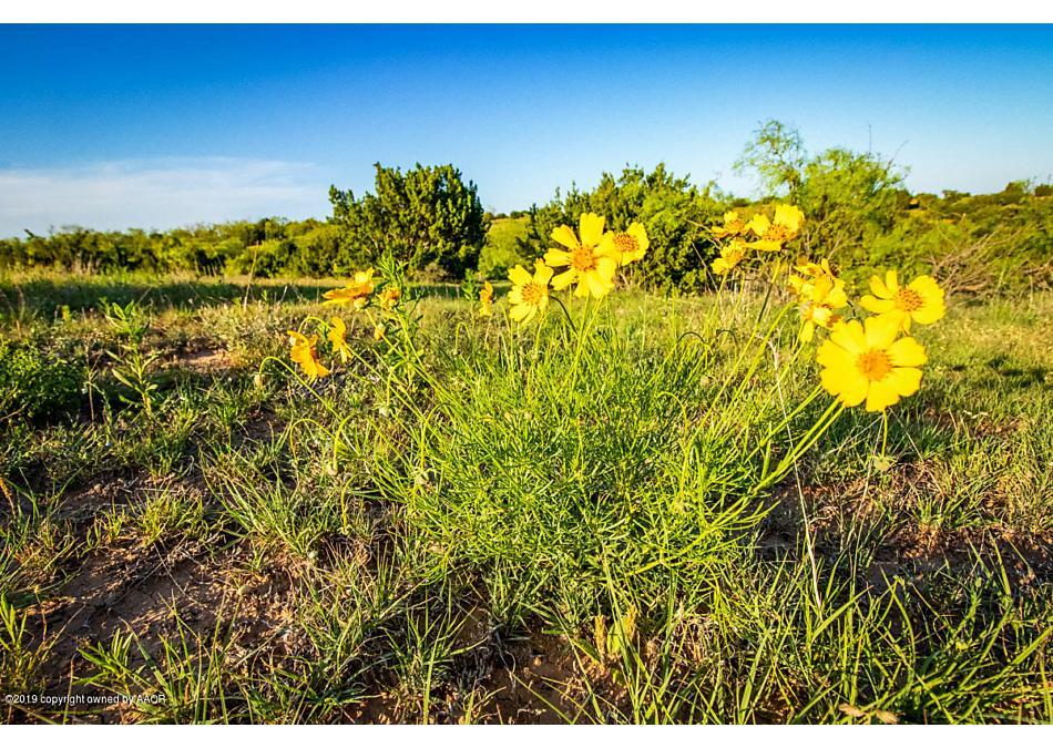Photo of Smith Ranch Silverton, TX 79257