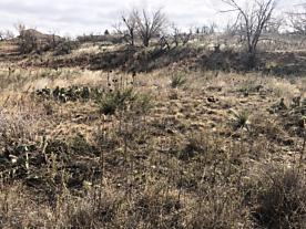 Photo of Chevelon Dr. Fritch, TX 79036