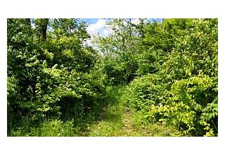 Photo of 14130 Darby Creek Road Orient, OH 43146