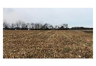 Photo of County Line Road Johnstown, OH 43031