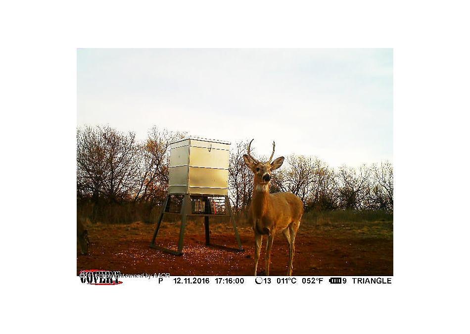 Photo of Rock Lake Memphis, TX 79245