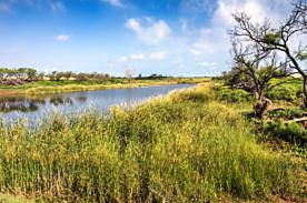 Photo of Spring Creek Memphis, TX 79245