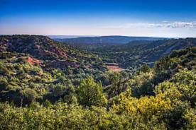 Photo of Willow Arroyo Ranch Claude, TX 79019