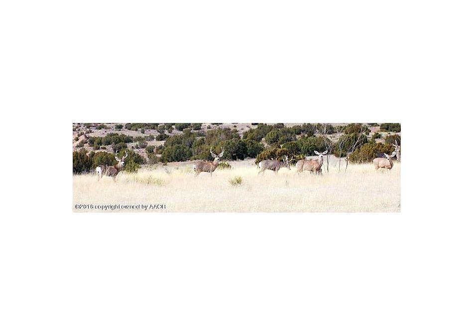 Photo of 12080 Wild Horse Trl Amarillo, TX 79118