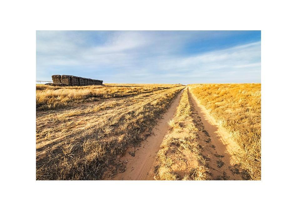 Photo of Chesnut Farms Texline, TX 79087