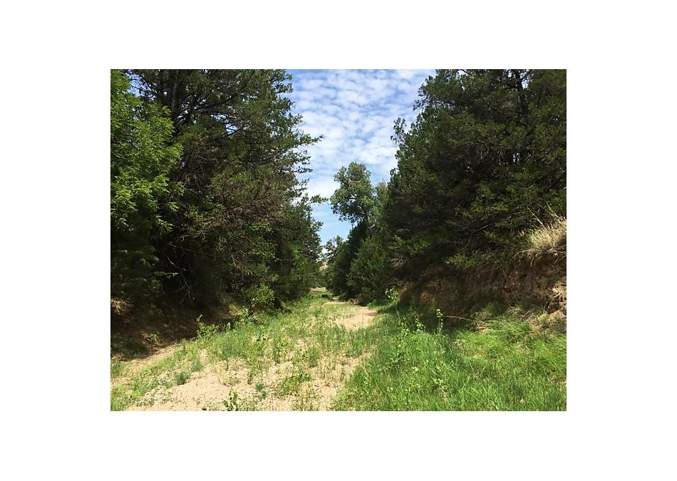 Photo of County Rd 22 Claude, TX 79019
