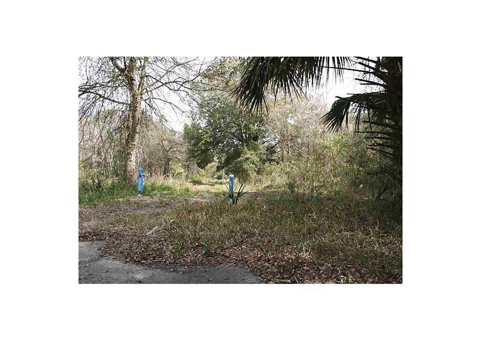 Photo of 0 E Essex Road Hastings, FL 32145