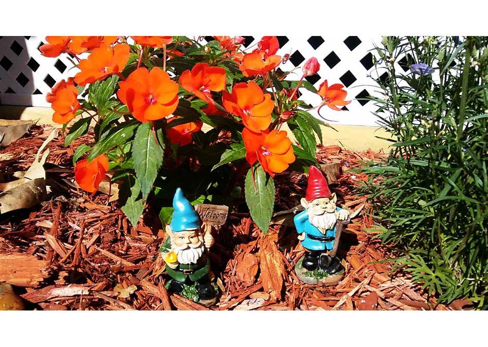 Photo of 30 Julia St 30 Julia St St Augustine, FL 32084