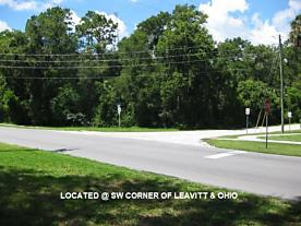 Photo of 0 S. Leavitt & E. Ohio Ave Orange City, FL 32763