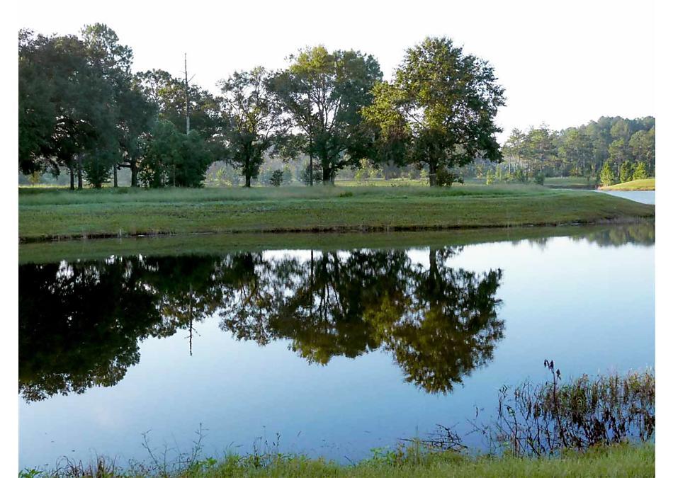 Photo of 264 Cedarstone Way St Augustine, FL 32092