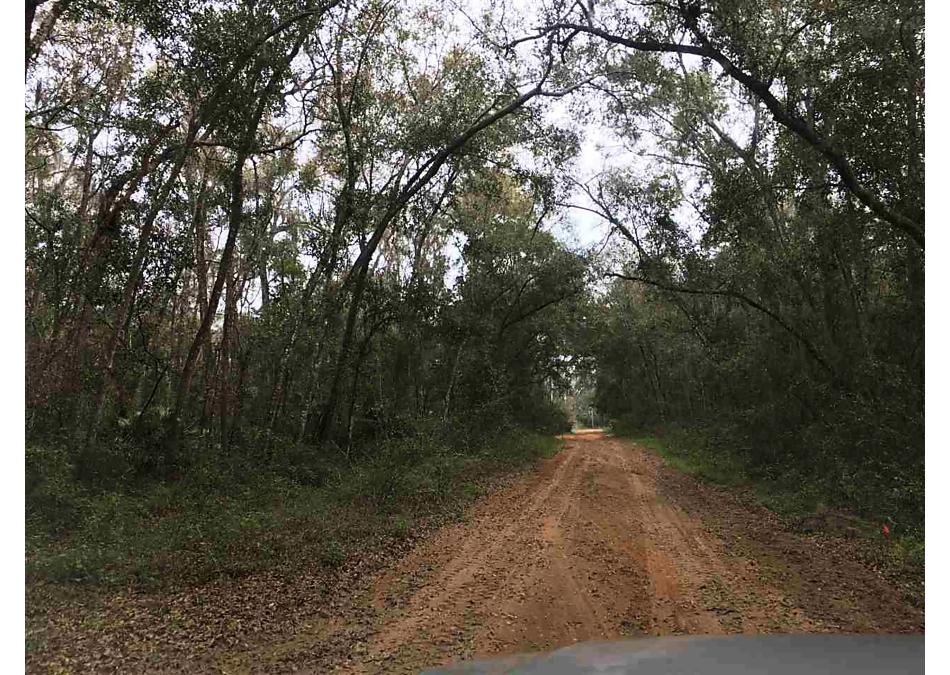 Photo of 124 Indian Mound Rd Satsuma, FL 32189