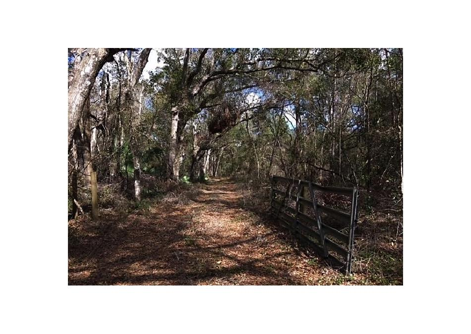 Photo of 1730 County Road 308 Crescent City, FL 32112