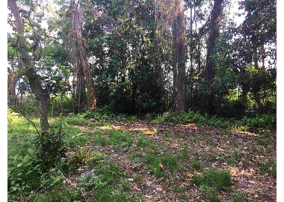 Photo of 117 Magnolia Ave. East Palatka, FL 32131