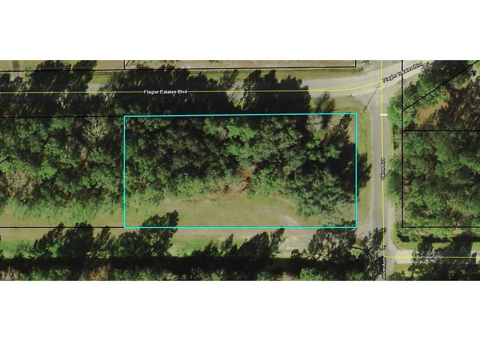 Photo of 4705 Flagler Estates Blvd Hastings, FL 32145