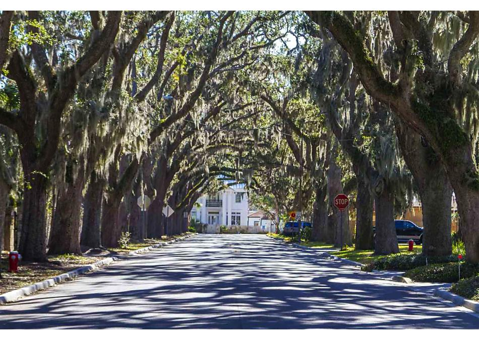Photo of 10045 Flikkema Avenue Hastings, FL 32145