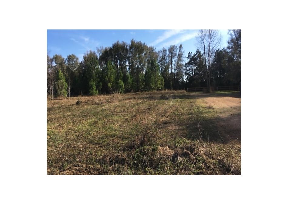 Photo of Ne 110th Ave Gainesville, FL 32621