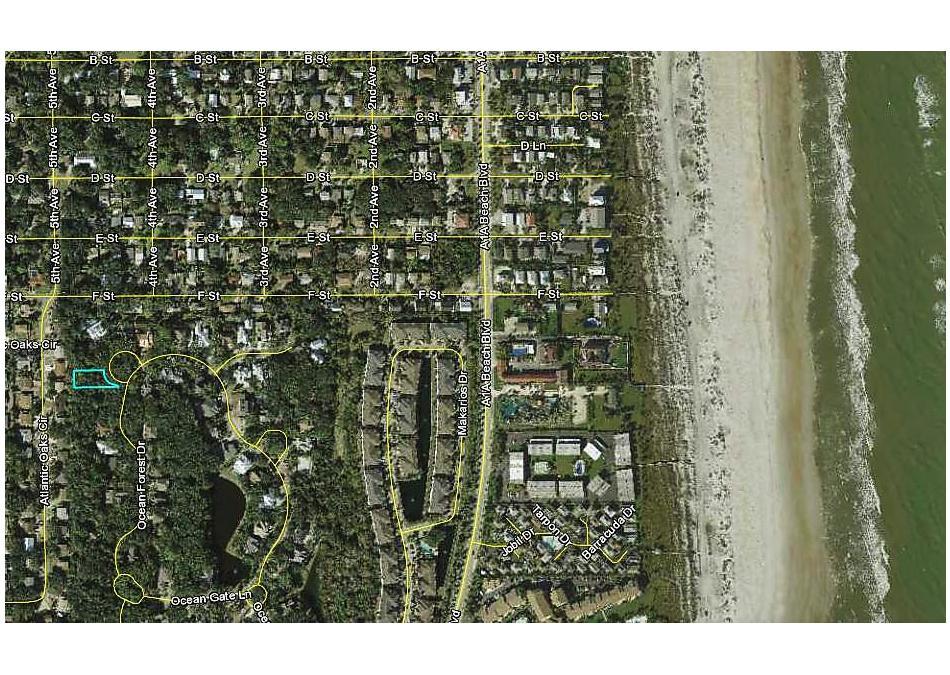 Photo of 1101 Laughing Gull Ln. St Augustine Beach, FL 32080