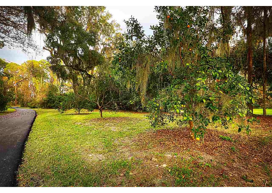 Photo of 13762 Mandarin Road Jacksonville, FL 32223