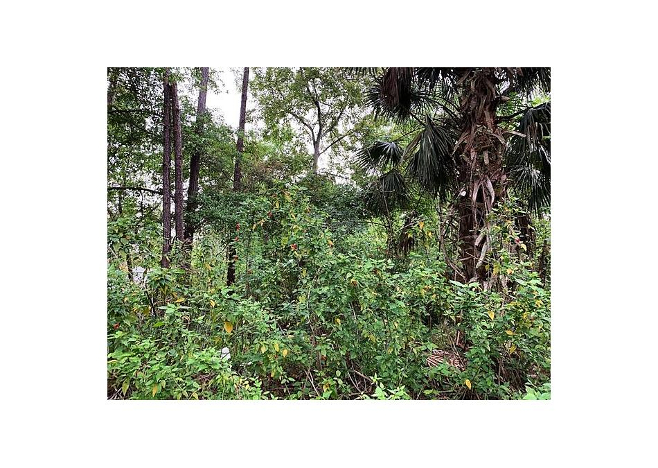 Photo of 913 Lot 10 Avery St. St Augustine, FL 32084