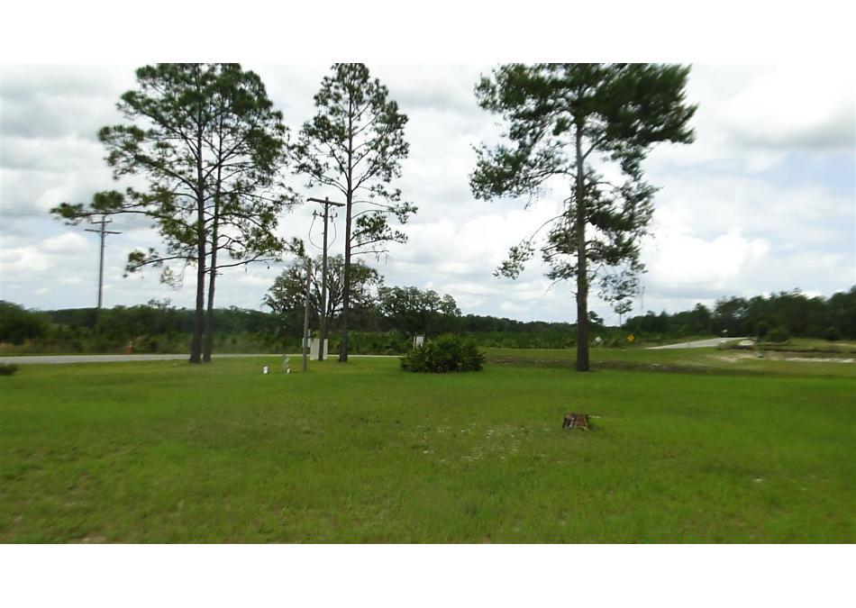 Photo of 101 Village Drive Welaka, FL 32193