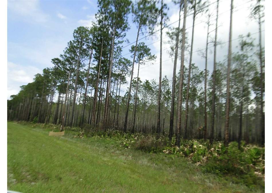 Photo of 422 Birch Blvd Georgetown, FL 32139