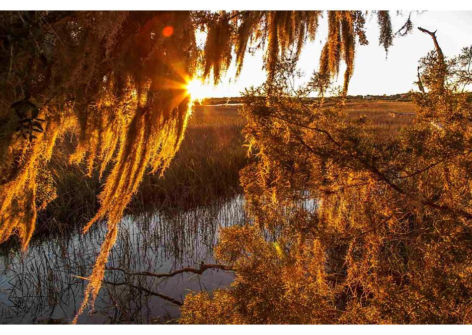 Photo of 138 Casa Bay Place St Augustine, FL 32080