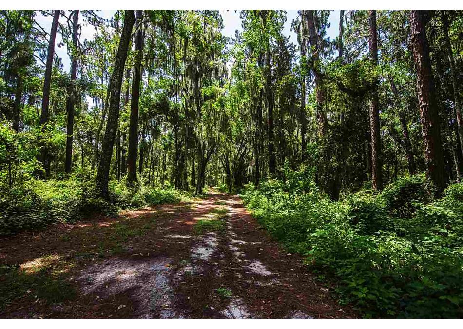 Photo of 528 County Road 207a East Palatka, FL 32131