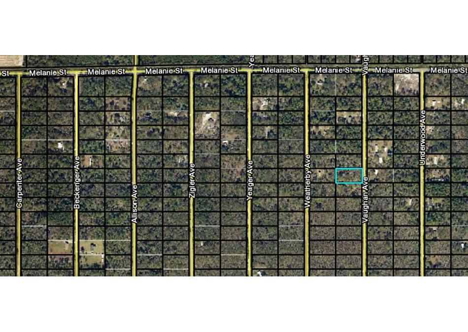 Photo of 10065 Vaughan Ave Hastings, FL 32145