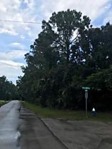 Photo of 38 Palmer Lane Palm Coast, FL 32164