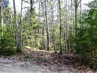 Photo of 0 Meetinghouse Rd & Page Road Gilmanton, NH 03237
