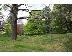 Photo of Lot 9 Grove Street Needham, Massachusetts 02492