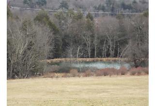 Photo of Bushville Swan Lake Road Bethel, NY 12720
