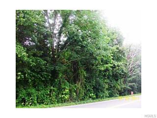Photo of 1533   Nys Rte 300  Lot #2 Newburgh, NY 12550