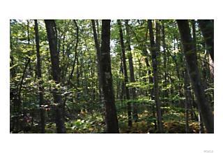Photo of 37   Trillium Trail Cochecton, NY 12726