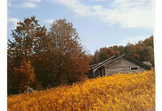 Photo of 92   Porter Road Mountain Dale, NY 12763