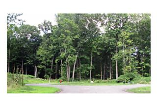 Photo of 37   Biltmore Drive Hopewell Junction, NY 12533