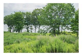 Photo of River Vista Drive Marlboro, NY 12542