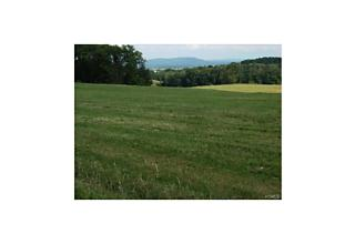 Photo of Hoslers Road Westtown, NY 10998