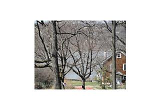 Photo of 16   Spring Street Wappingers Falls, NY 12590
