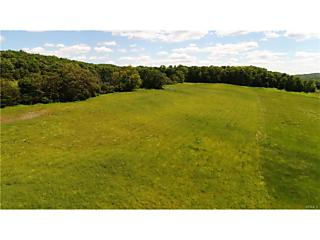 Photo of 133   Woodstock Road Millbrook, NY 12545