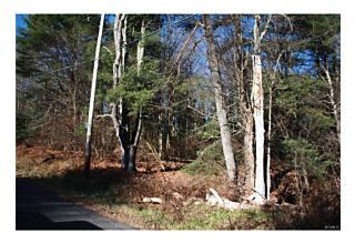 Photo of Cantrell Road Monticello, NY 12701