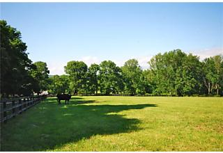 Photo of 20 Boutonville Road Cross River, NY 10518