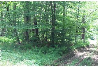 Photo of Treyz Hill Road Livingston Manor, NY 12758