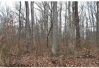 Photo of 117 Woods Road East Windsor, NJ 08520