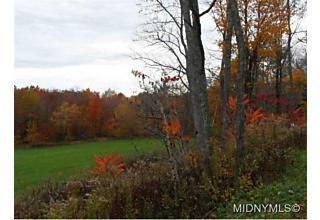 Photo of Cruickshank Road Deerfield, NY 13502
